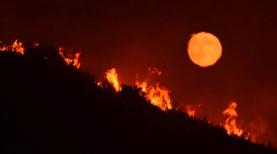 Mass evacuations, burned property as massive wildfires rage in California (PHOTOS, VIDEOS)