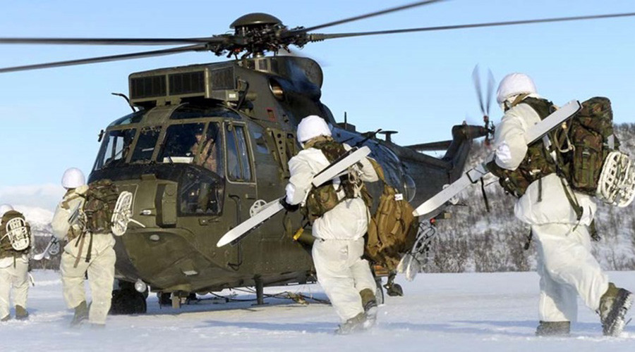Royal Marine annual Arctic warfare exercises scrapped due to lack of cash