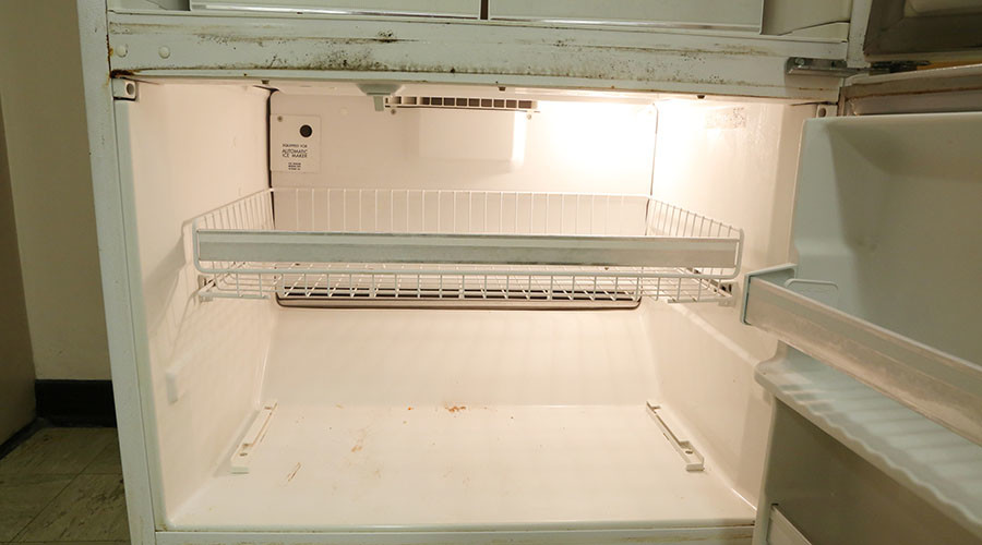 Teenage girl found chopped up in freezer in suspected honor killing
