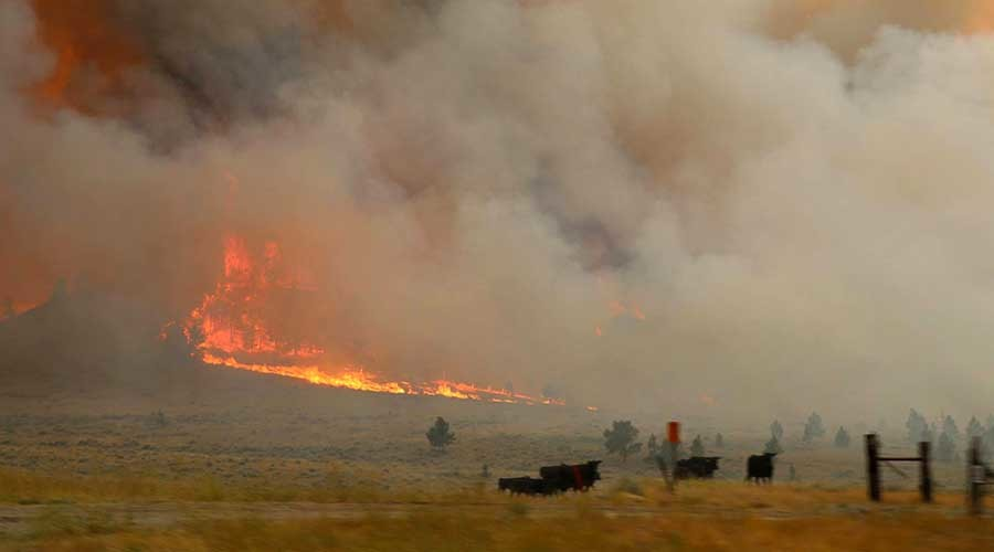 Largest active US wildfire burns 250k acres in Montana