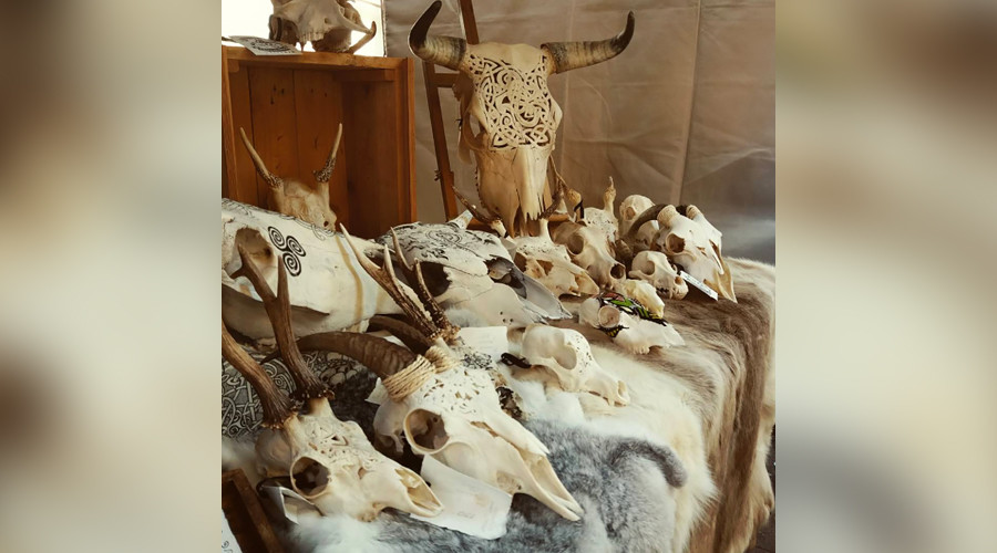 Russian artist transforms dead animals' skulls into mesmerizing artwork (PHOTOS)