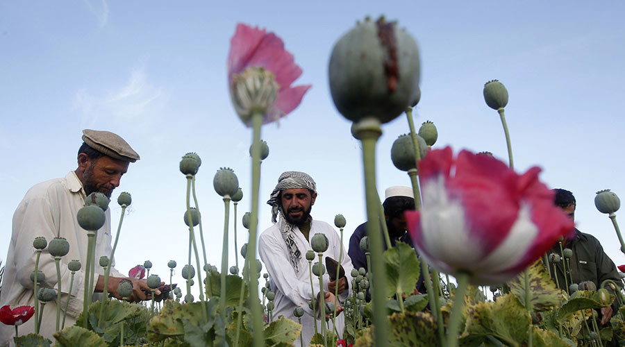 'It's US baby, and I'm not proud of it - Afghanistan is world's biggest drug dealer'