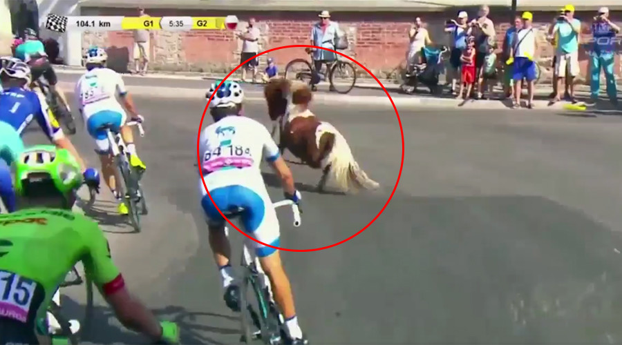 Foaling around: Runaway pony joins bike race in Poland (VIDEO)