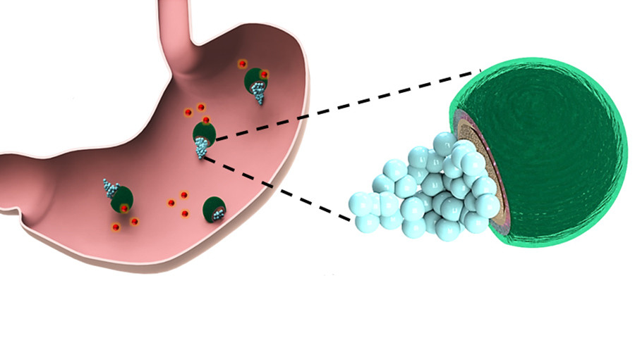 Tiny robots crawl through mouse's stomach to heal ulcers