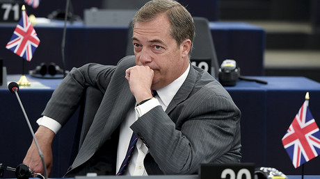 UKIP's next leader: Who will save (or scuttle) the ship?