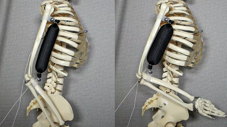 Final barriers to life-like robots overcome – US scientists (VIDEO)