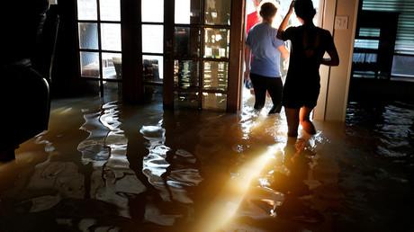 DNC fraud lawsuit, Harvey was predicted, presidential port-a-potties