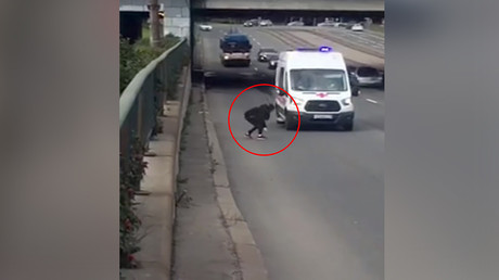 Kitten rescue: Girl ventures onto busy St. Petersburg highway to save stray feline (VIDEO)