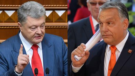 © (L) Sputnik / Николай Лазаренко; (R) Sputnik / Алексей Витвицкий