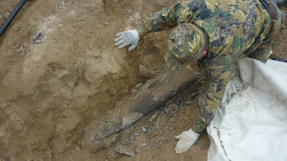 Mammoth remains discovered. Photo by Viktor Kotlyarov