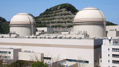 This picture taken on April 12, 2012 shows the third and fourth reactor building of the Ohi nuclear power plant of the Kansai Electric Power Co  at Ohi town in Fukui prefecture, western Japan. (AFP Photo / Jiji Press)