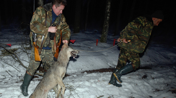 Russia mulls total ban on game hunting
