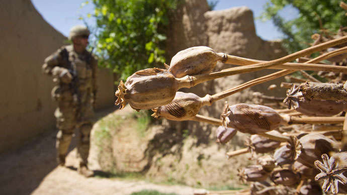 '1mn died' from Afghan heroin, drug production '40 times higher' since NATO op