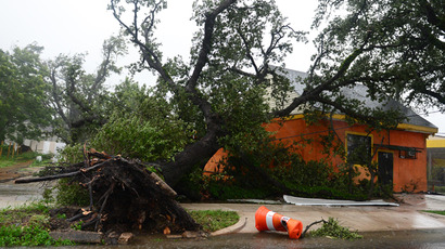 A fallen tree is positioned in front of a house in New Orleans , Louisiana (AFP Photo / Frederic J. Brown)