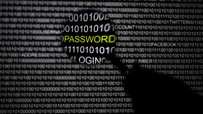 Hack the hacker: US Congress urged to legalize cyber-attacks to fight cybercrimes