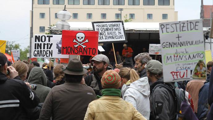 Monsanto set to halt GMO push in Europe