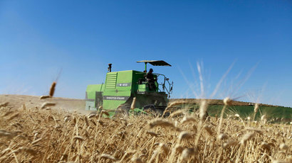 Monsanto points to sabotage at GMO-contaminated wheat field
