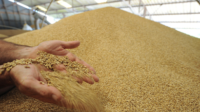 Unapproved GM rice found in US exports to over 30 countries (STORY RETRACTED)