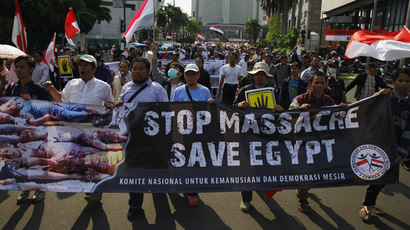 Dozens dead as Egyptian Islamists rally to defend Morsi