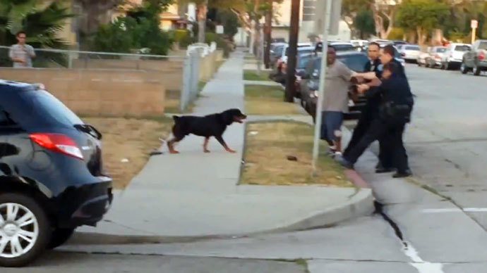 Police in California receive death threats after killing man's dog