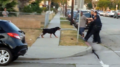 California cop promoted after killing pet dog