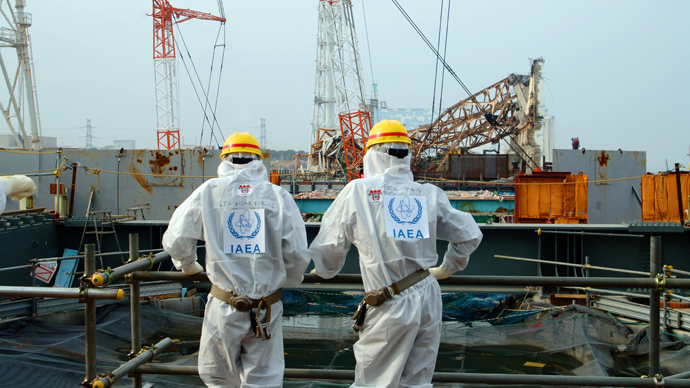 AFP Photo / IAEA