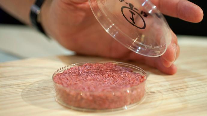 Lab Grown Burger Bbc $332,000 Lab-grown Burger