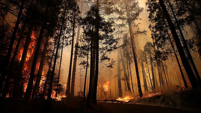 Rim Fire Continues To Burn Near Yosemite National Park (AFP Photo / Getty Images / Justin Sullivan)