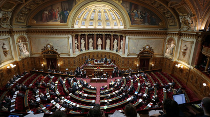 The French Senate (AFP Photo/Jacques Demarthon)