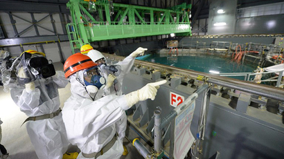 Japan govt considers assuming Fukushima decontamination – media