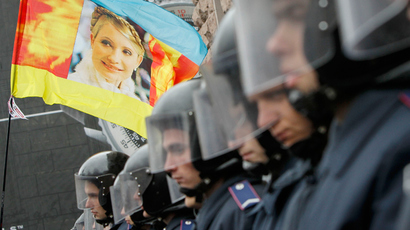 Riot police block opposition supporters carrying a flag with the portrait of jailed former prime minister Yulia Tymoshenko from entering the city hall during a rally in Kiev October 23, 2013 (Reuters / Gleb Garanich)