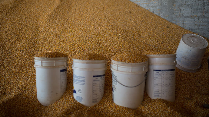 ​China rejects fifth US corn cargo in a month, citing GMO strain