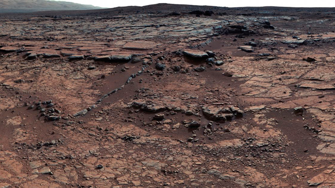 rock on mars by rover - photo #6