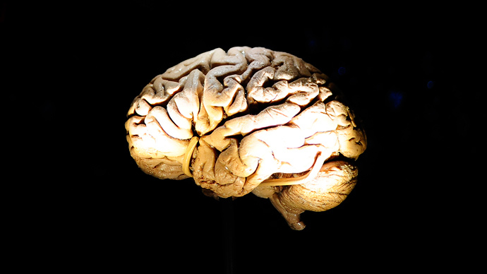 Scientists work on backing up human brain with computers