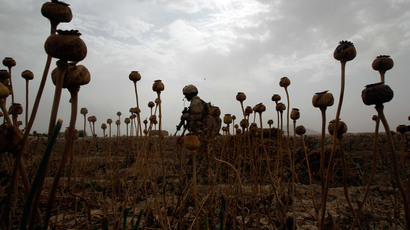 Afghan H-bomb: Record opium harvest, billions burn in 'war on drugs'