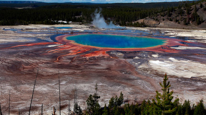 Yellowstone National Park.(Reuters / Jim Urquhart )