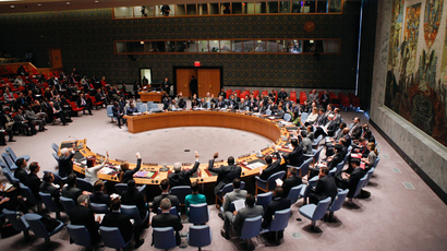 The United Nations Security Council (Reuters / Eduardo Munoz)