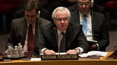 Russia's ambassador to the United Nations, Vitaly Churkin.(Reuters / Andrew Kelly)