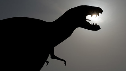 Dinosaurs wiped out by 'nuclear winter' effect, not firestorm after asteroid – study