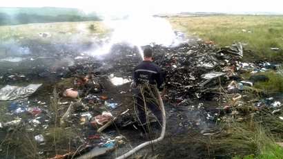 A man works at putting out a fire at the site of a Malaysia Airlines Boeing 777 plane crash in the settlement of Grabovo in the Donetsk region, July 17, 2014.(Reuters / Maxim Zmeyev )