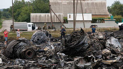 Debris is seen at the site of Thursday's Malaysia Airlines Boeing 777 plane crash near the settlement of Grabovo, in the Donetsk region July 18, 2014 (Reuters / Maxim Zmeyev)