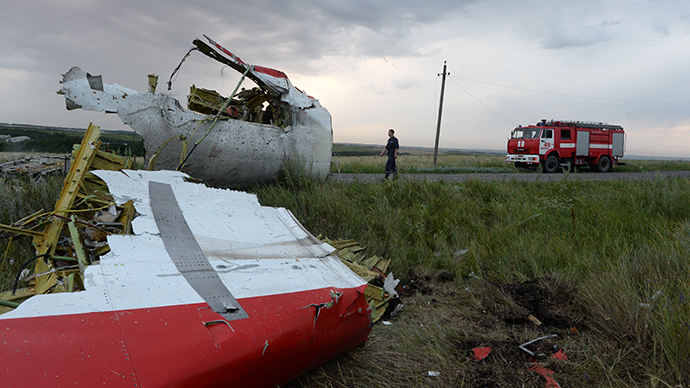 The crash site of the Malaysian Boeing 777 outside Shakhtyorsk, Donetsk Region (RIA Novosti / Mikhail Voskresenskiy)