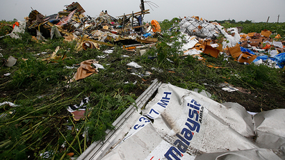 Wreckage from the nose section of a Malaysian Airlines Boeing 777 plane which was downed on Thursday is seen near the village of Rozsypne, in the Donetsk region July 18, 2014 (Reuters / Maxim Zmeyev)