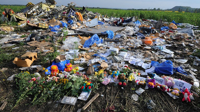 Flowers and plush toys are left at the site of the crash of a Malaysia Airlines plane carrying 298 people from Amsterdam to Kuala Lumpur in Grabove, eastern Ukraine, on July 19, 2014. (AFP Photo / Dominique Faget)