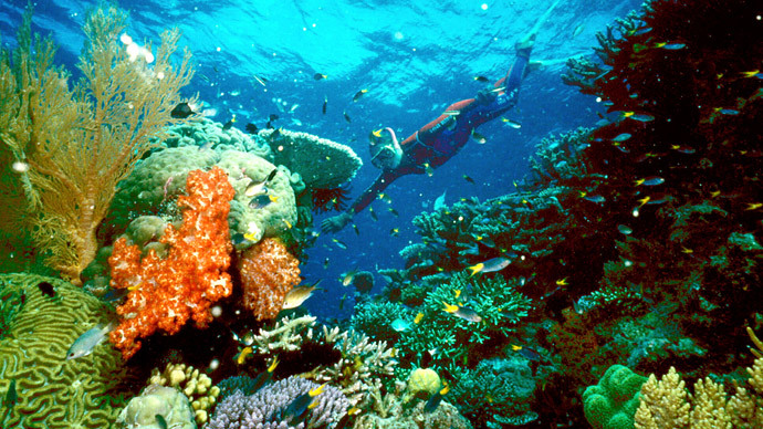 Great Barrier Reef in 'worst state since records began', scientists say