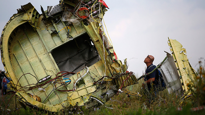 A man inspects the crash site of Malaysia Airlines Flight MH17, near the village of Hrabove (Grabovo), Donetsk region July 22, 2014 (Reuters / Maxim Zmeyev)