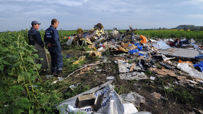 Wreckage of Malaysia Airlines flight MH17 two days after it crashed in a sunflower field near the village of Rassipnoe, in east Ukraine, on July 19, 2014. (AFP Photo / Dominique Faget)