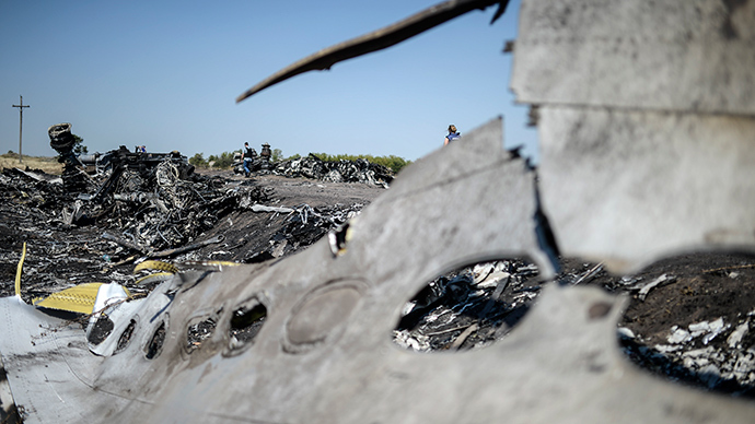 A part of the Malaysia Airlines Flight MH17 at the crash site in the village of Hrabove (Grabovo), some 80km east of Donetsk, on August 2, 2014 (AFP Photo / Bulent Kilic)