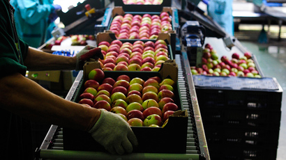 Turkey: 'We're ready to increase food exports to Russia'