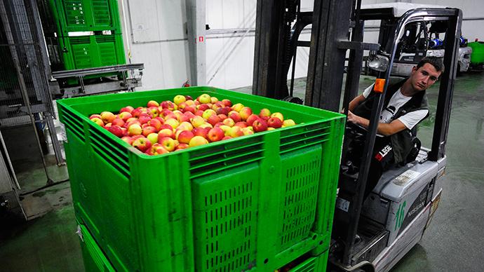Russia's food embargo making EU squeal even louder